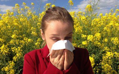 Lidiar con las alergias estacionales este otoño